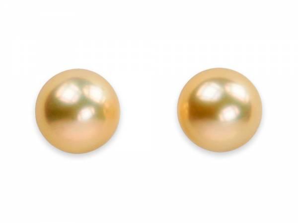 Queen Pea Golden - Large Pearl Stud Earrings