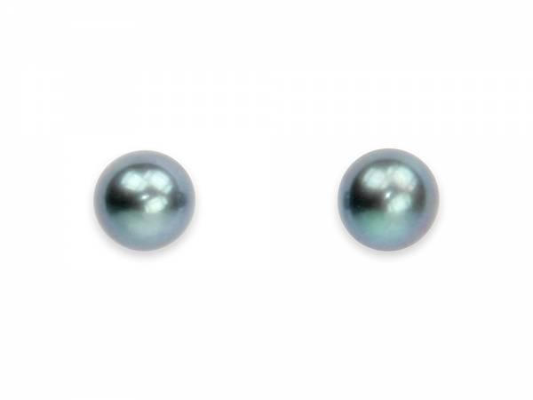 Princess Pea Black - Stud Pearl Earrings