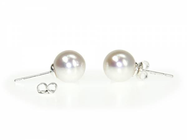 Queen Pea White - Large Pearl Stud Earrings-303
